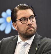 SD-ledaren Jimmie Åkesson  Ali Lorestani/TT / TT NYHETSBYRÅN