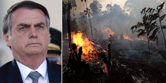 Jair Bolsonaro/Skogsbränder i Amazonas. TT