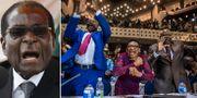Robert Mugabe/Jublande människor i parlamentet. TT