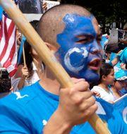 Anti-Kinaprotester utanför Vita huset. Wikimedia Commons