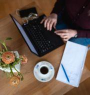 Kvinna vid en dator.  Stina Stjernkvist/TT / TT NYHETSBYRÅN