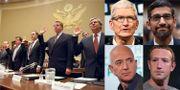 Bild från big tobacco-utfrågningen till vänster och Cook, Pichai, Bezos och Zuckerberg till höger.  TT