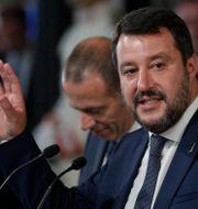 Lega-ledaren Matteo Salvini. Andrew Medichini / TT NYHETSBYRÅN