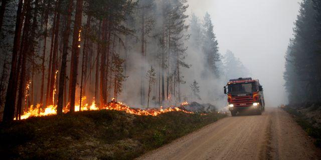 Bild från skogsbranden utanför Ljusdal förra året.  Mats Andersson/TT / TT NYHETSBYRÅN