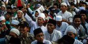 Motståndare till Widodo demonstrerar tidigare i maj. JUNI KRISWANTO / AFP