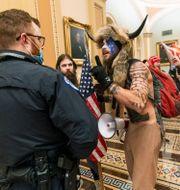 Jake Angeli fångades på bild inne i Kapitolium under stormningen av kongressen den 6 januari i år.  Manuel Balce Ceneta / TT NYHETSBYRÅN