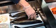 Fiskhandlare på Öckerö Fisk. Björn Larsson Rosvall / TT / TT NYHETSBYRÅN