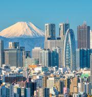 Tokyo. Shutterstock