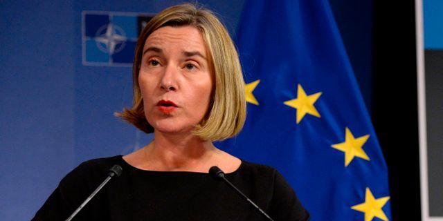 EU:s utrikeschef Fredrica Mogherini. THIERRY CHARLIER / AFP