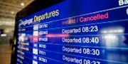 Inställda flighter på Landvetter flygplats pga att den brittiska resejätten Thomas Cook, som äger Ving, försatts i konkurs. Adam Ihse/TT / TT NYHETSBYRÅN