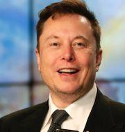 Jack Dorsey och Elon Musk. TT