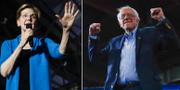 Elizabeth Warren och Bernie Sanders. TT