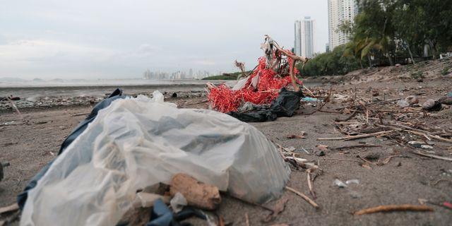 Plastpåsar och annat avfall i Panama. ERICK MARCISCANO / TT NYHETSBYRÅN