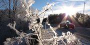 Vinterväg. Arkivbild. TT NYHETSBYRÅN/ NTB Scanpix