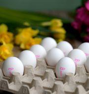 Ägg toppar listan för mat som påskfirarna vill ha.  Janerik Henriksson/TT / TT NYHETSBYRÅN