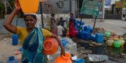 En kvinna samlar vatten i Chennai under torkan i Indien i somras. ARUN SANKAR / AFP