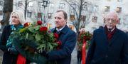 Stefan Löfven på väg till Olof Palmes grav.  Nils Petter Nilsson/TT / TT NYHETSBYRÅN