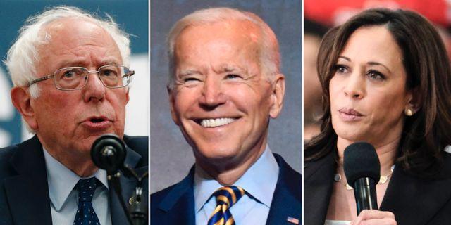 Bernie Sanders / Joe Biden / Kamala Harris TT