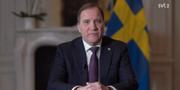 Statsminister Stefan Löfven. SVT