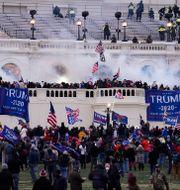 Bild från stormningen av Kapitolium, Washington DC, den 6 januari 2021. John Minchillo / TT NYHETSBYRÅN