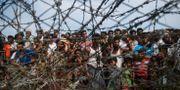 Flyktingar vid gränsen mellan Myanmar och Bangladesh.  YE AUNG THU / AFP