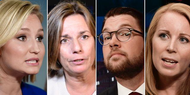 Ebba Busch Thor/Isabella Lövin/Jimmie Åkesson/Annie Lööf TT