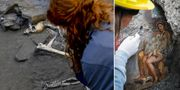 Arkeologer gjorde flera fynd i Pompeji förra vintern. De fann bland annat skelett, ett termalbad och en freskomålning av Leda och svanen. Sedan förra veckan kan besökare se flera av de nya fynden. TT Nyhetsbyrån