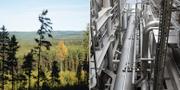Arkivbilder på natur i Dalarna och ledningar på en annan gasutvinningsanläggning.  TT