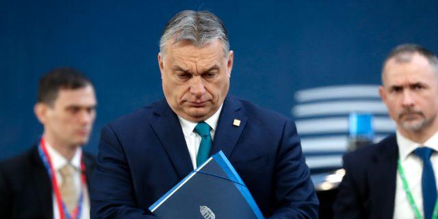 Ungerns premiärminister Viktor Orbán. Arkivbild. Ludovic Marin / TT NYHETSBYRÅN