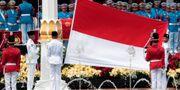 Indonesisk flagga. Arkivbild. Dita Alangkara / TT NYHETSBYRÅN
