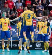 Svenskarna firar segern. Jessica Gow/TT / TT NYHETSBYRÅN