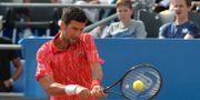 Djokovic under en uppvisningsmatch i Zadar i Kroatien den 21 juni Zvonko Kucelin / TT NYHETSBYRÅN