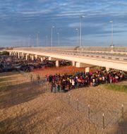 De tillfälliga lägren under en bro i Del Rio, Texas. Julio Cortez / TT NYHETSBYRÅN