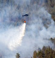 Skogsbranden i Västmanland. JOCKE BERGLUND / TT / TT NYHETSBYRÅN