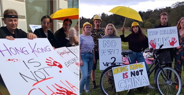 Bild från sittstrejken i Göteborg samt från protesten vid Kinas ambassad i Stockholm. LUF.