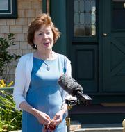 Republikanska senatorn Susan Collins. Mary Schwalm / TT NYHETSBYRÅN