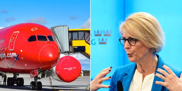 Ett flygplan och Elisabeth Svantesson.  TT