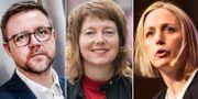 Fredrick Federley, Malin Björk och Jytte Guteland. TT.