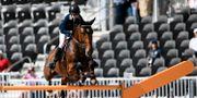 Sveriges Malin Baryard-Johnsson på hästen Indiana under andra dagens hoppning vid rystar VM i Tryon.  Pontus Lundahl/TT / TT NYHETSBYRÅN