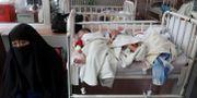 Nyfödda barn på ett sjukhus i Kabul.  OMAR SOBHANI / TT NYHETSBYRÅN