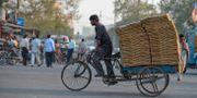 Illustrationsbild. En man transporterar gods på en cykel i New Delhi.  Leif R Jansson / TT / TT NYHETSBYRÅN