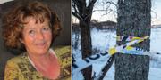 Anne Elisabeth Falkevik Hagen/Polisavspärrning vid familjen Falkevik Hagen bostad i Fjellhamar. Arkivbild. Privat/TT