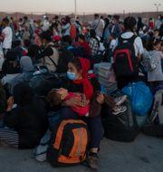 Flyktinglägret i Lesbos. Petros Giannakouris / TT NYHETSBYRÅN