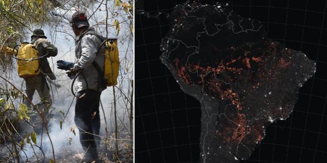 Frivilliga brandmän i Bolivia bekämpar bränder i Amazonas/rekordmånga bränder har registrerats. TT/Nasa