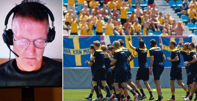 Tegnell, arkivbild från fotbolls-EM 2012 TT