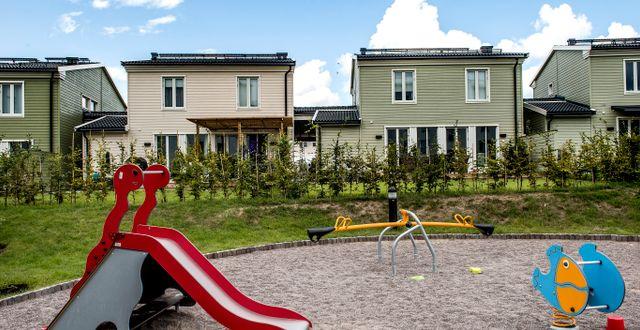 Tomas Oneborg / SvD / TT / TT NYHETSBYRÅN