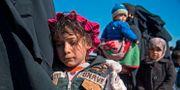Barn och kvinnor evakueras från Baghouz. FADEL SENNA / AFP