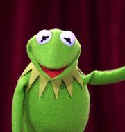 Grodan Kermit.  Rob Griffith / TT NYHETSBYRÅN