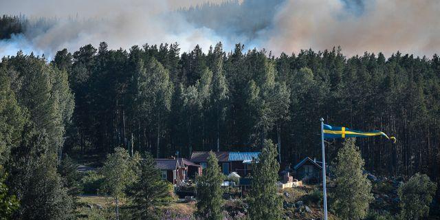 Skogsbrand i Enskogen utanför Ljusdal. Maja Suslin/TT / TT NYHETSBYRÅN