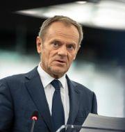 Donald Tusk. Jean-Francois Badias / TT NYHETSBYRÅN